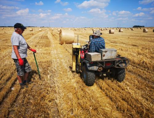 Pobór prób gleby na Krajowe Dni Pola 2020 w Minikowie
