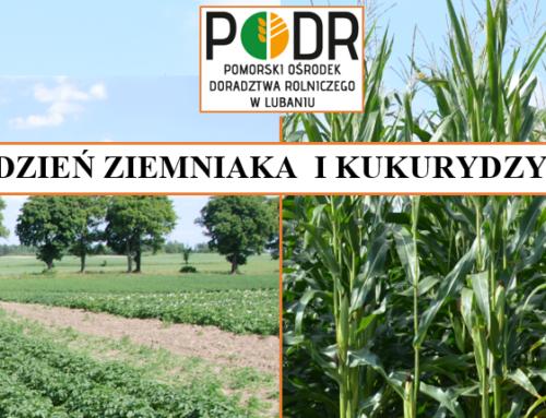 Dzień Ziemniaka i Kukurydzy w Lubaniu (PODR)
