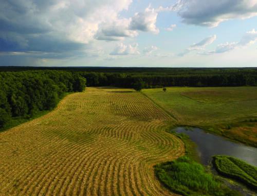 Konferencja pn. Idea zielonego ładu jako szansa na zwiększanie bioróżnorodności w produkcji roślinnej (DODR, Wrocław)